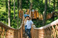 Anakeesta (Slider Image 6) | Gatlinburg Attractions