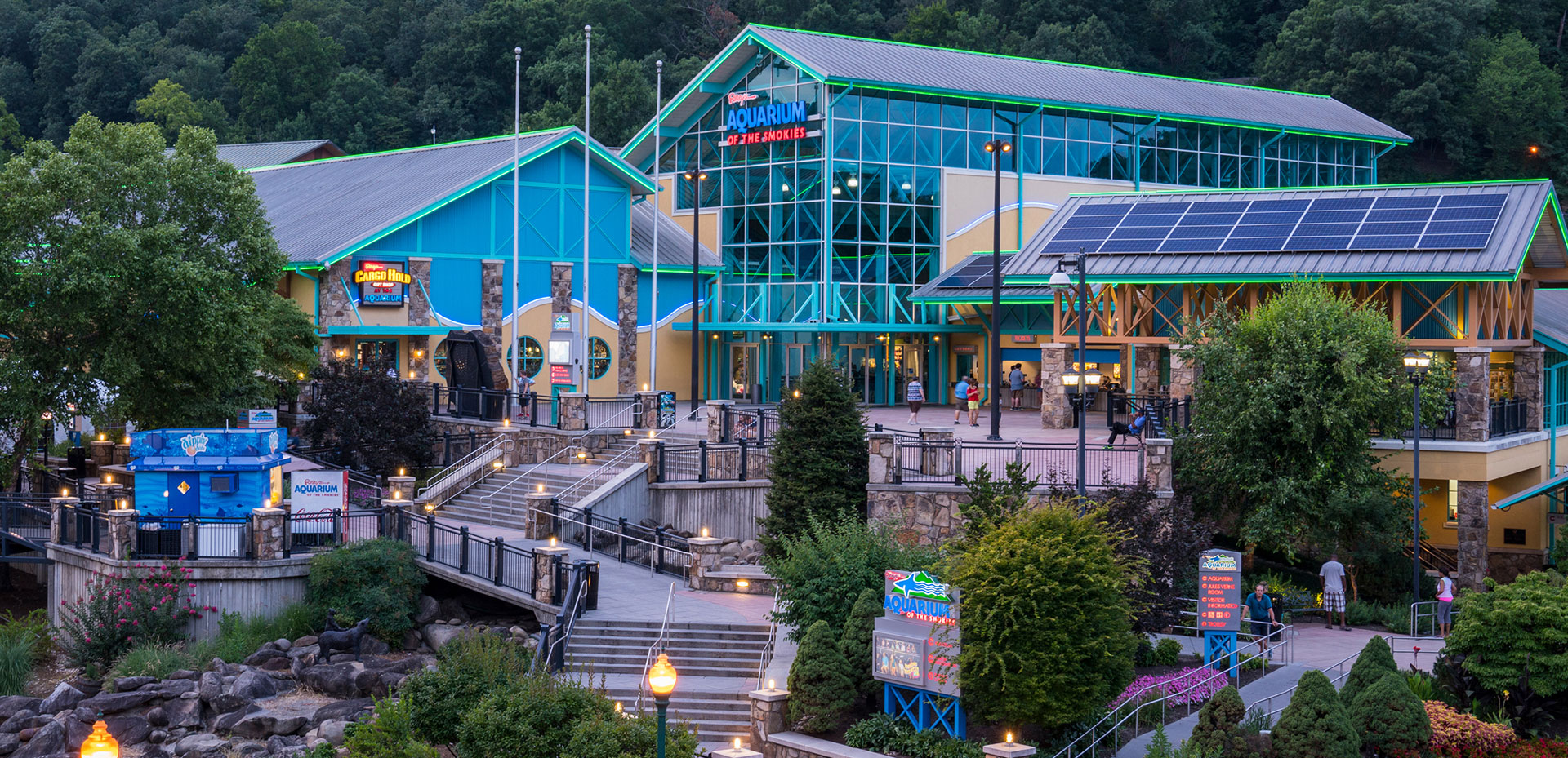 Ripley's Aquarium of the Smokies | Gatlinburg Attractions | Things To Do In Gatlinburg, TN