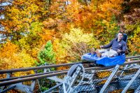Ober Gatlinburg (Slider Image 2) | Gatlinburg Attractions