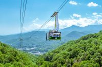 Ober Gatlinburg (Slider Image 5) | Gatlinburg Attractions