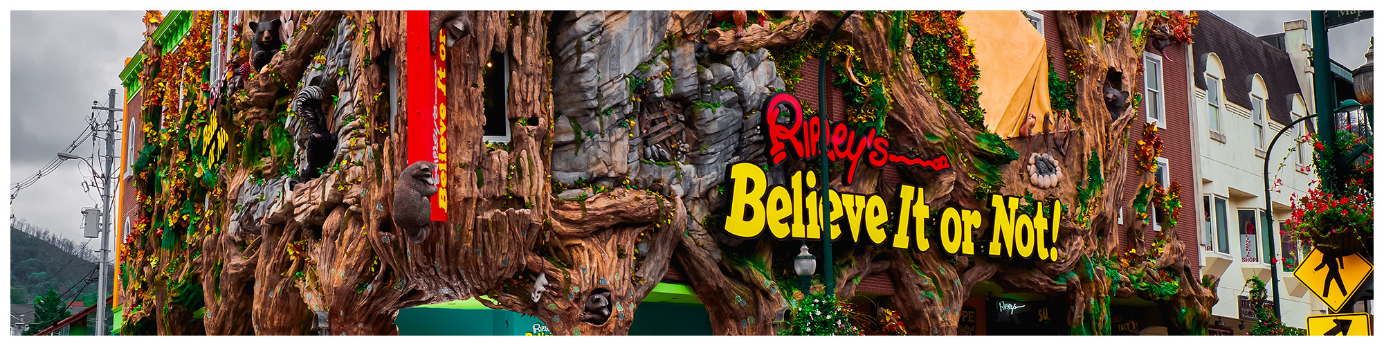 Ripley's Believe It or Not! (Header Background) | Gatlinburg Attractions