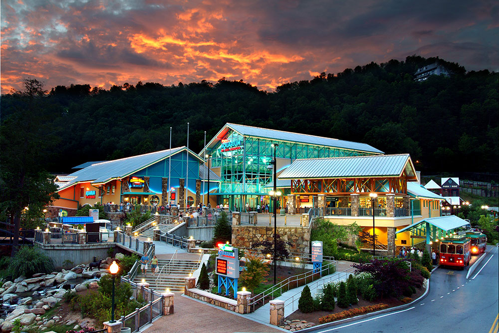 Ripley's Aquarium of the Smokies (Slider Image 3) | Gatlinburg Attractions